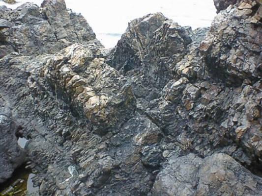 この岩体は、硬質頁岩といい、頁岩がマグマの熱などで焼かれて変質したものです。 大変堅く、緻密で、